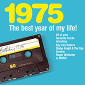 The Best Year Of My Life: 1975 by Various Artists