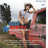 Hot & New Country Music Vol. 3 von Various Artists
