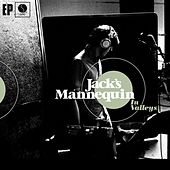 In Valleys by Jack's Mannequin