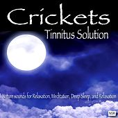 Crickets - Tinnitus Solution by Crickets - Tinnitus Sleep Solution