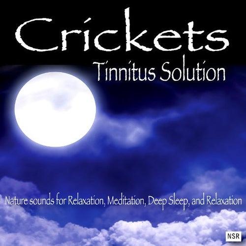 Crickets - Tinnitus Solution by Crickets - Tinnitus Sleep Solution