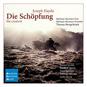 Haydn: Die Schöpfung/The Creation by Thomas Hengelbrock
