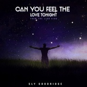 Can You Feel the Love Tonight by Sly Goodridge