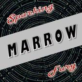 Sparking Fury by Marrow