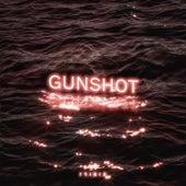 Gunshot de Trinix