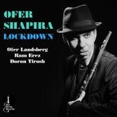 Lockdown von Ofer Shapira