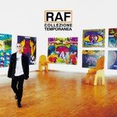 Collezione Temporanea de Raf