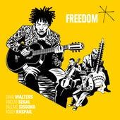 Freedom by David Walters