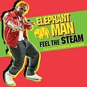 Feel The Steam [Feat. Chris Brown] von Elephant Man