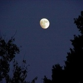 Moon River by Brigitte