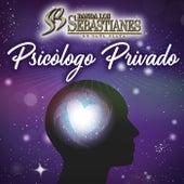 Psicólogo Privado de Banda Los Sebastianes