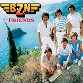 Friends von Bzn
