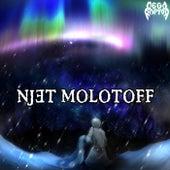 Njet Molotoff von Megaraptor