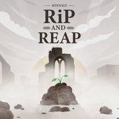 Rip and Reap de Keenalf