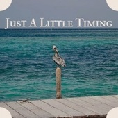 Just A Little Timing von Various Artists