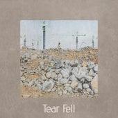 Tear Fell by Various Artists