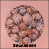 Sugarbush de Various Artists