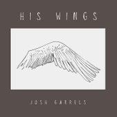 His Wings by Josh Garrels