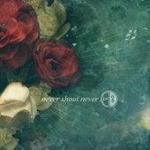 Ep 02 de Never Shout Never
