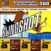 Slingshot by Various Artists