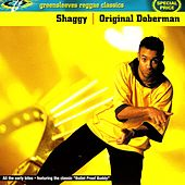 Original Doberman de Shaggy