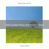 2020 Best: Chill Cicadas Music and Perfect Sleep by Sleepy Times