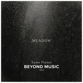 Meadow by Beyond Music