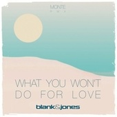 What You Won't Do for Love (Monte Remix) by Blank & Jones
