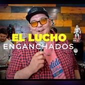 La Curiosidad/Azul by El Lucho y su banda