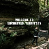 Welcome to Uncharted Territory von Tyler Cohen