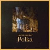 Liechtensteiner Polka von Various Artists