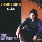 Entre dos mundos di Vicente Soto Sordera
