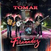 Puras Pa Tomar (En Vivo) by Grupo Fernandez