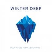 Winter Deep: Deep House for Colder Days van Various Artists