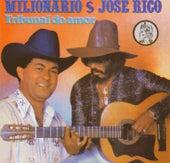 Volume 12 (Tribunal do Amor) de Milionário e José Rico