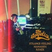 Strange Feelings (Manasseh Remix) by The Hempolics