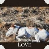 My Love My Love de Various Artists