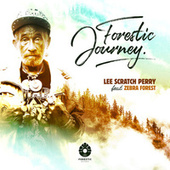 Forestic Journey by Lee