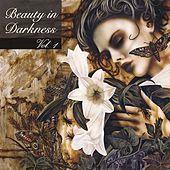 Beauty In Darkness by Various Artists