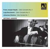 Haydn, Boccherini & Brahms: Cello Works (Live) de Antonio Janigro