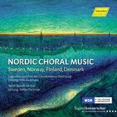 Nordic Choral Music de Jugendkonzertchor der Chorakademie Dortmund