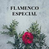 Flamenco Especial by Various Artists