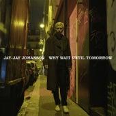 Why Wait Until Tomorrow by Jay-Jay Johanson