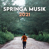 Springa Musik 2021 fra Various Artists