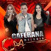 Caferana Melodia (Ao Vivo) de Banda Caferana Melodia