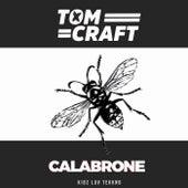 Calabrone de Tomcraft