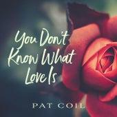 You Don't Know What Love Is (feat. Danny Gottlieb & Jacob Jezioro) de Pat Coil
