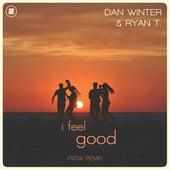 I Feel Good (FSDW Remix) de Dan Winter