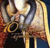 10 temas a la Virgen de Guadalupe van Various Artists