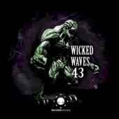 Wicked Waves Vol. 43 de Various Artists